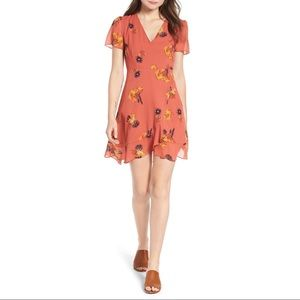 Madewell Posy Cactus Flower Dress Size 6
